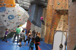 From Toronto Climbing Academy: http://www.climbingacademy.com/index.php?mod=gallery